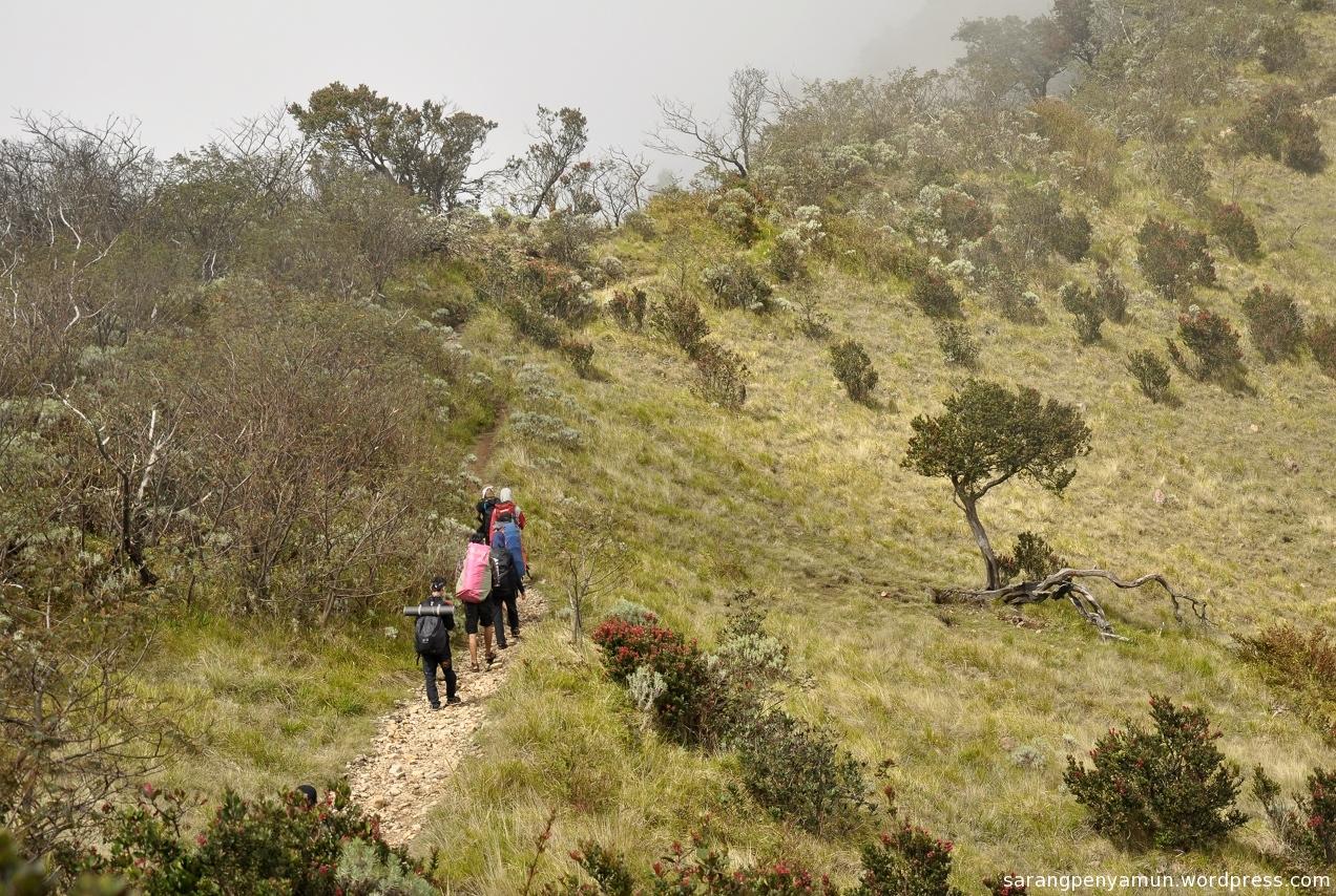 3 Jalur Pendakian Yang Bisa Kamu Pilih Untuk Mencapai Hargo Dumilah Titik Tertinggi Gunung Lawu Yuk Piknik